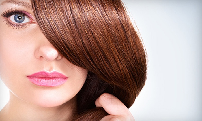 Cut and Color - Schaumburg: $20 for Salon Services