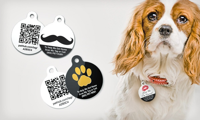 PetHub Tags with Lost Pet Services: Pet Tags and Services (Up to 66% Off). 18 Options Available.