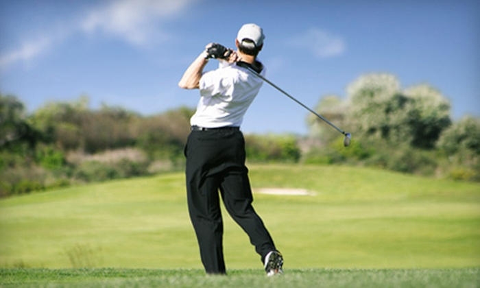 The GolfBetter Studio - North Itasca: $100 Worth of Golf Instruction