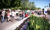 Scottsdale Arts Festival/SCPA - Scottsdale Center for the Performing Arts: Single-Day Visit for Two, Four, or Six at Scottsdale Arts Festival (Up to 54% Off)