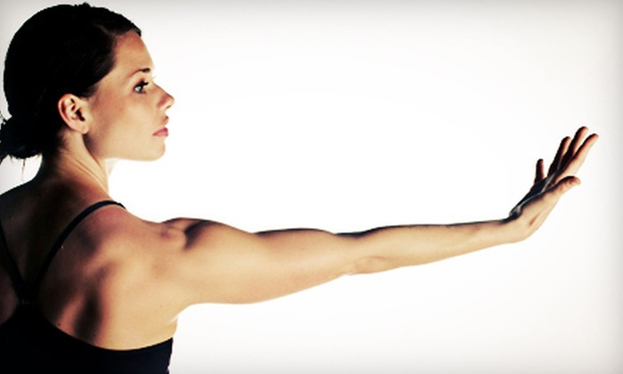 Redbird Pilates & Fitness - East Cesar Chavez: 10 or 20 Pilates-Fitness Classes, or One Month of Unlimited Classes at Redbird Pilates & Fitness (Up to 81% Off)