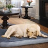 Terry-Top Striped Memory Foam Pet Bed