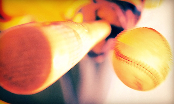 BASH Sports Academy - Chicago: One or Three 60-Minute Batting-Cage Sessions at Bash Sports Academy (Up to 54% Off)