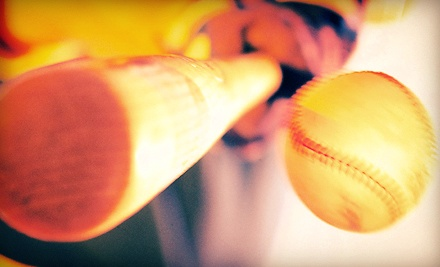 One or Three 60-Minute Batting-Cage Sessions at Bash Sports Academy (Up to 54% Off)
