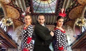 Arte Flamenco: Una o dos entradas al 'Arte Flamenco' desde 17,95 € en el Palau de la Música Catalana de Barcelona