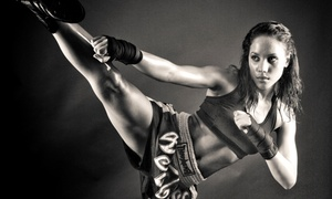 Amerikick: One or Two Months of Unlimited Fitness Kickboxing or Martial-Arts Classes at Amerikick (Up to 63% Off)