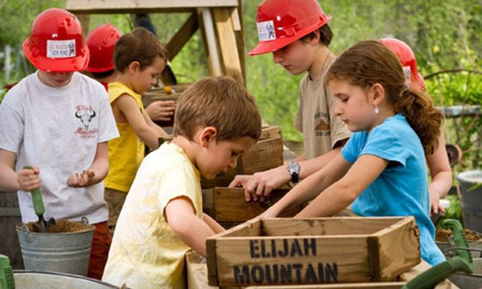 Elijah Mountain Gem Mine - Hendersonville: $20 for Two Prospector's Dream Buckets at Elijah Mountain Gem Mine ($40 Value)