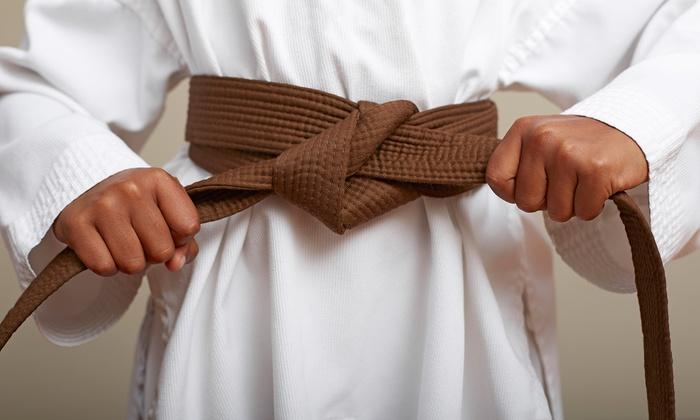 Shorinkan Karate-do - Vista: 10 Karate Classes at Shorinkan Karate-Do (63% Off)