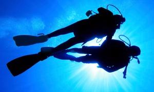 Capt. Saam's Scuba School: Discover Scuba Class or Open-Water Charter Dive at Capt. Saam's Scuba School (Up to 47% Off)