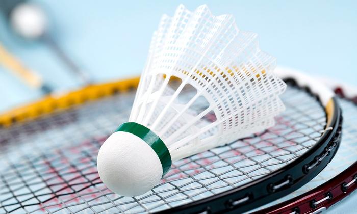 Bay Badminton Center - Multiple Locations: Badminton for Two or Four at Bay Badminton Center (Up to 44% Off)