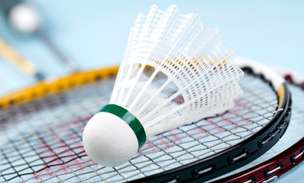 Badminton for Two or Four at Bay Badminton Center (Up to 58% Off). Four Options Available.