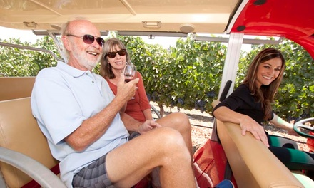 Boutique-Wine Tasting and Winery Tour for Two or Four at Doffo Winery (Up to 38% Off)