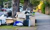 Junk Monkey - Scarborough: $69 for $170 Worth of Junk Removal from Junk Monkey