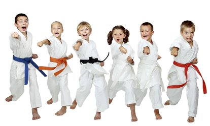 Six Weeks of Unlimited <strong>Martial Arts</strong> Classes for One or Two Children at West Omaha <strong>Martial Arts</strong> (Up to 54% Off)