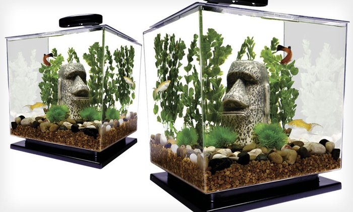 26 99 For A Desktop Fish Tank With Led Lamp Groupon