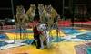 Carden International Circus Presents The El Kahir Shrine Circus at U.S. Cellular Center - Multiple Dates Available