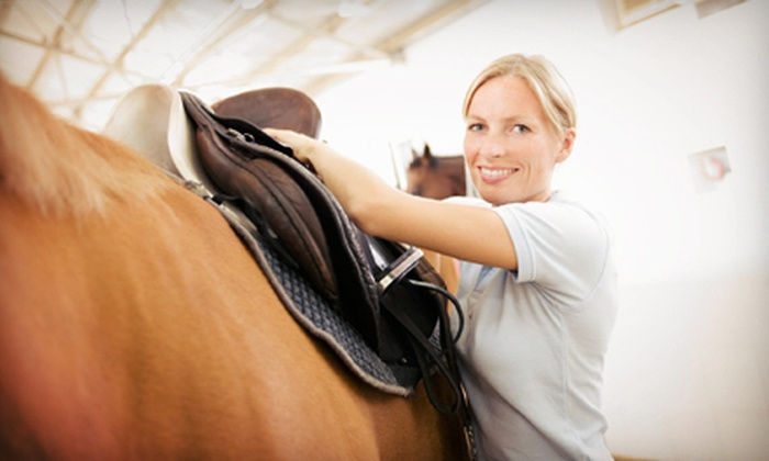 Luton Riding Academy - Grosse Ile: $39 for Two 60-Minute Private Horseback-Riding Lessons at Luton Riding Academy ($90 Value)