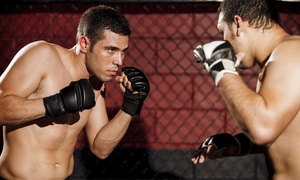MMA World: Four Classes or One-Month Membership at MMA World (Up to 85% Off)