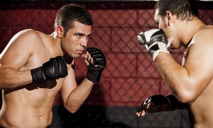 3er- oder 6er-Karte Kampfsportkurs nach Wahl bei Fight Area (bis zu 67% sparen*)