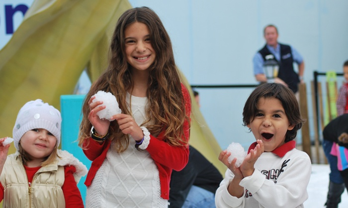 The Florida Aquarium - Downtown Tampa: Holiday FantaSea December 26–30 for One or Two at The Florida Aquarium (Up to 50% Off)