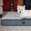 Feather-Top Orthopedic Pet Bed