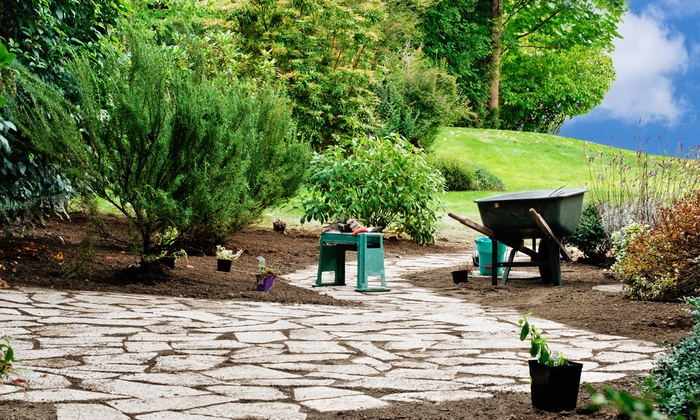Holmes Fine Gardens - Fairfield County: Two or Four Hours of Tree Pruning or Removal or Gardening Services from Holmes Fine Gardens (Up to 50% Off)