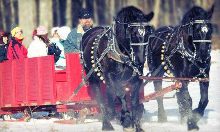 Cornerstone Ranch - Cornerstone Ranch: Horse-Drawn Sleigh or Wagon Ride with S'mores and Hot Cocoa for Two or Four at Cornerstone Ranch (Up to 54% Off)