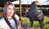 Eagle Encounters - Cape Town: Entrance, Encounters and Show Passes at Eagle Encounters