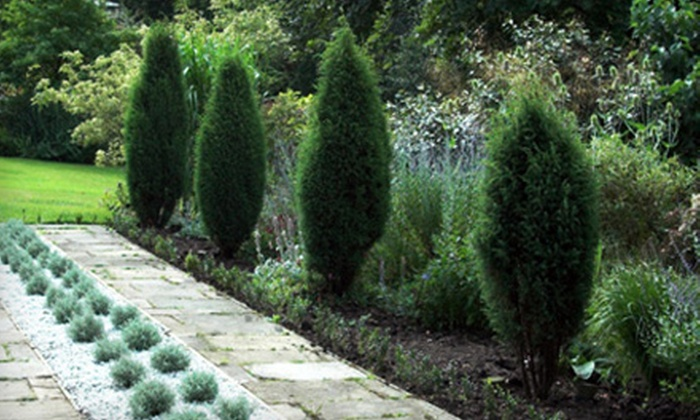 The Garden Spot Nursery & Landscaping - Sparks: $20 for $40 Worth of Shrubs and Trees at The Garden Spot Nursery & Landscaping
