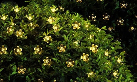 1 of 2 solar LEDslingers met bloemen in twee kleuren licht om uit te kiezen vanaf € 11,99 tot korting