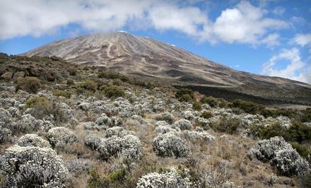 ✈ 10-Day Mount Kilimanjaro Trek wtih Airfare. Price/Person Based on Double Occupancy.