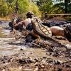 Up to 53% Off 5K Mud Run