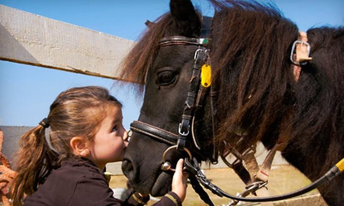 Westside Stables - Beaverton-Hillsboro: One-Day Horseback-Riding Camp or One Group Horseback-Riding Lesson for One Child at Westside Stables (Up to 53% Off)