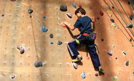 $42 for Five Indoor Rock-Climbing Visits at Adventure Rock Indoor Climbing Gym ($80 Value)