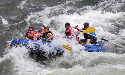 Whitewater-Rafting Day Trip on the Salmon River for Two, Four, or Six from America's Rafting Company (50% Off)