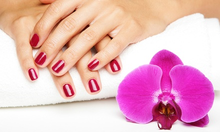 One or Two Basic Spa Pedicures or Shellac Manicures at Divine Nails & Spa (Up to 53% Off)
