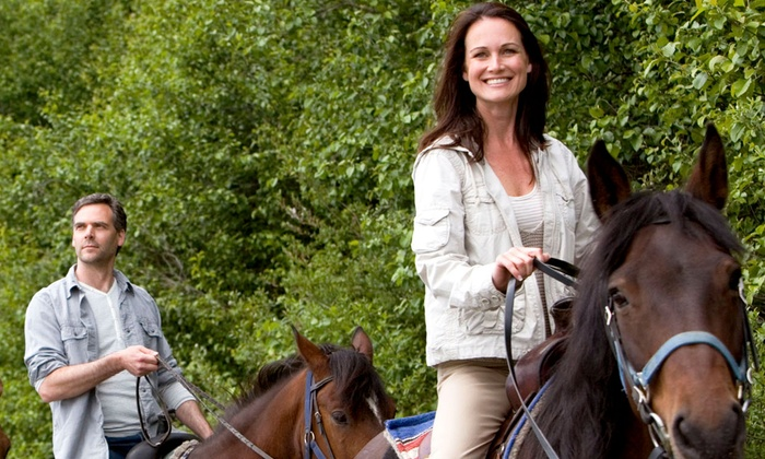 Lazy T Trail Rides - Kelly Ridge: Two-Hour Trail Ride on Horseback for Two or Four Through Oroville Wildlife Area from Lazy T Trail Rides (45% Off)