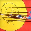 Half Off Archery Lesson and Group Shooting Session