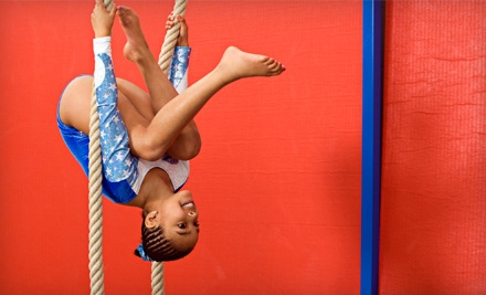 One Month of Open-Gym Time for Two or Four Kids Aged 12 or Older at Elite Gymnastics Academy (Up to 66% Off)