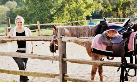 Three or Eight Riding Lessons with Raffle Tickets, or 2014 Season Pass at White Horse Equestrian (Up to 64% Off)