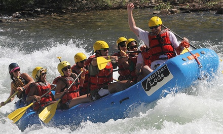 Ropes Course or Rafting Adventures from Mother Lode River Center (Up to 49% Off). Multiple Options Available.