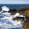 Stay at The Harbor Lights Inn in Depoe Bay, OR