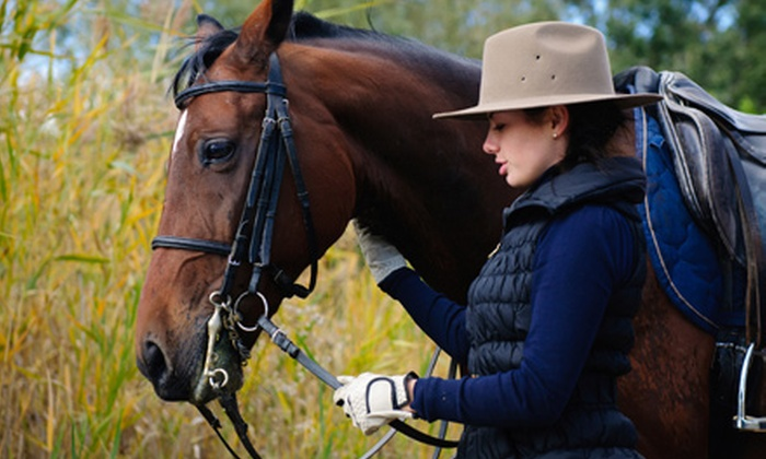 Equestricise - Capistrano Villas: Two or Four Semiprivate Horseback-Riding Lessons at Equestricise (Up to 58% Off)