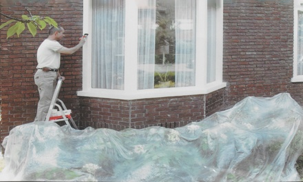 Two or Five Protective Decorating Paint Dust Sheets