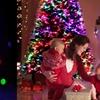 LED Optic Fibre Christmas Tree
