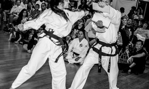 Traditional Taekwondo Center Of Palm Harbor: Two Weeks of Unlimited Martial Arts Classes at Traditional Taekwondo Center of Palm Harbor (57% Off)