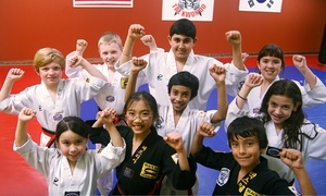 White Tiger Martial Arts: $20 for Four Tae Kwon Do Classes, One Private Session, and Uniform at White Tiger Martial Arts ($155 Value)