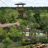 Up to 40% Off Zip Line Ride at Gatorland