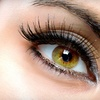 Up to 77% Off Eyelash Extensions in New Canaan