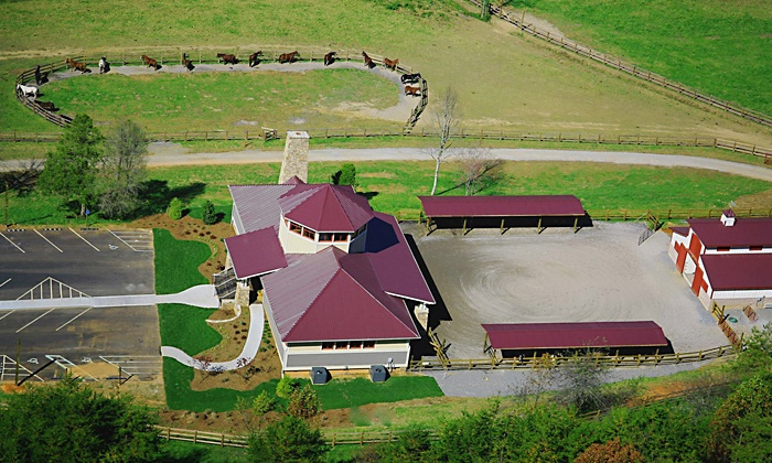 The Stables at Brasstown Valley Resort & Spa - Young Harris: 60-Minute Trail Ride for Two or Four at The Stables at Brasstown Valley Resort & Spa (Up to 51% Off)